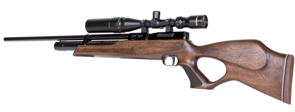 13 Best Air Rifles & Pellet Guns: Guidelines and Top Reviews